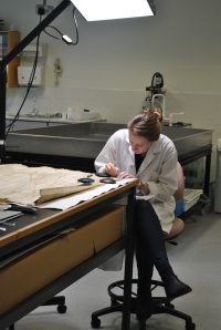 Hard at work in the Conservation Studio.