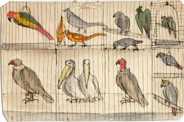 Eaton birds