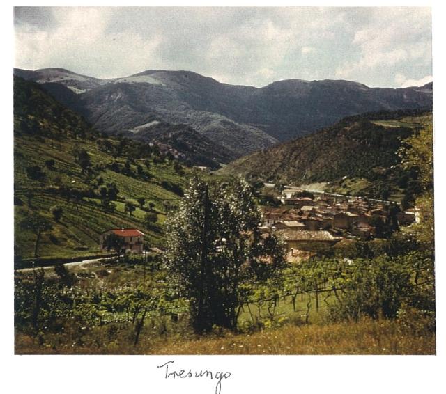 Tresungo