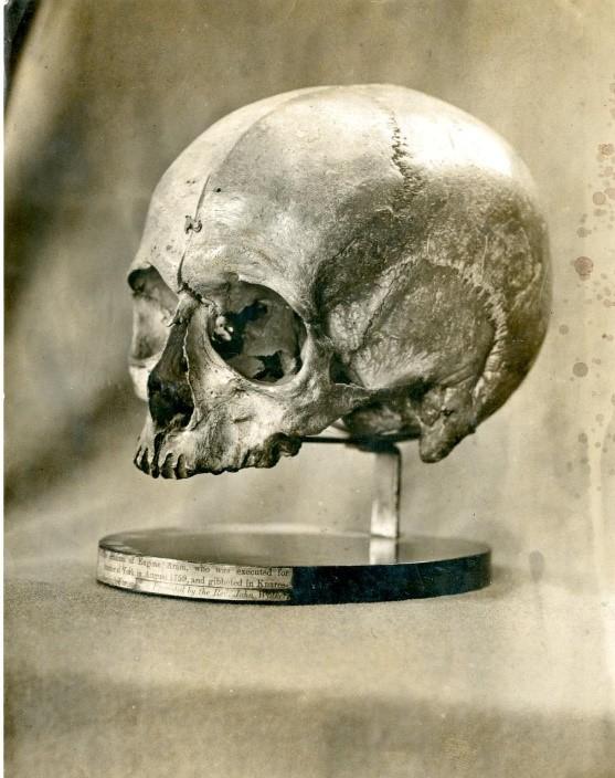 8 Aram skull